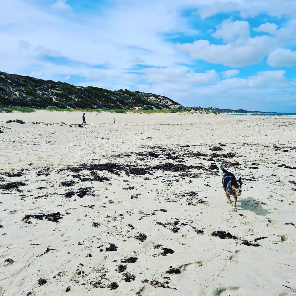 Beach during covid-19